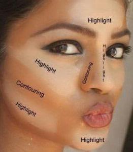 face contour model